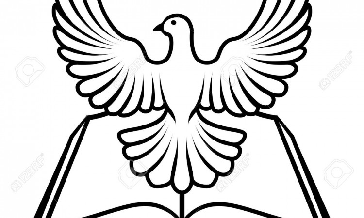 17962163-Christian-Bible-with-the-holy-spirit-in-the-form-of-a-white-dove--Stock-Vector